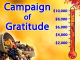 Campaign of Gratitude