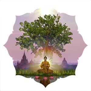 Buddha Nature Boutique Cards